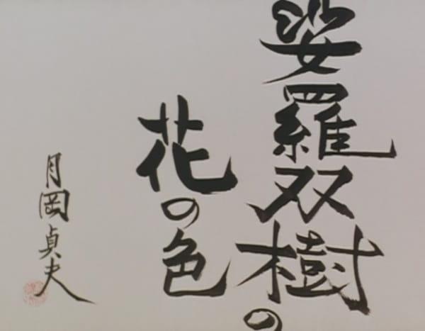 Sarasoujuu no Hana no Iro